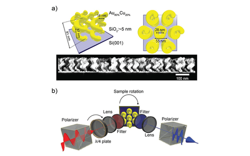 Strong Rotational Anisotropies Affect Nonlinear Chiral Metamaterials