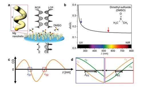 Magnesium plasmonics for UV applications and chiral sensing