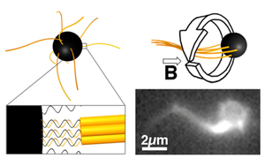 Magnetic Propulsion of Microswimmers with DNA-Based Flagellar Bundles