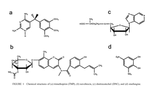 Ultraviolet resonance Raman study of drug binding in dihydrofolate reductase, gyrase, and catechol O-methyltransferase