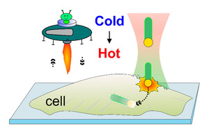 Optical and Thermophoretic Control of Janus Nanopen Injection into Living Cells
