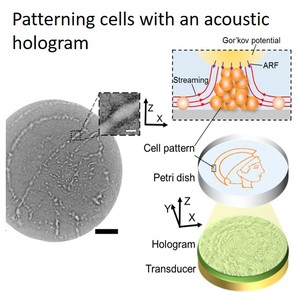 Thumb ticker small cell patterning with acoustic hologram