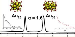 HPLC of monolayer-protected Gold clusters with baseline separation