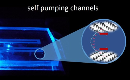 Microchannels with Self-Pumping Walls