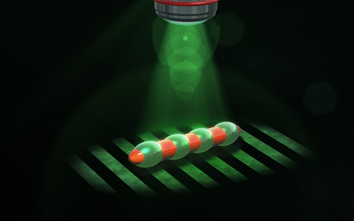 Structured light enables biomimetic swimming and versatile locomotion of photoresponsive soft microrobots