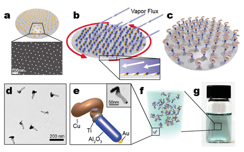 Hybrid nanocolloids with programmed three-dimensional shape and material composition