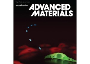 Biocompatible magnetic micro‐ and nanodevices: Fabrication of FePt nanopropellers and cell transfection