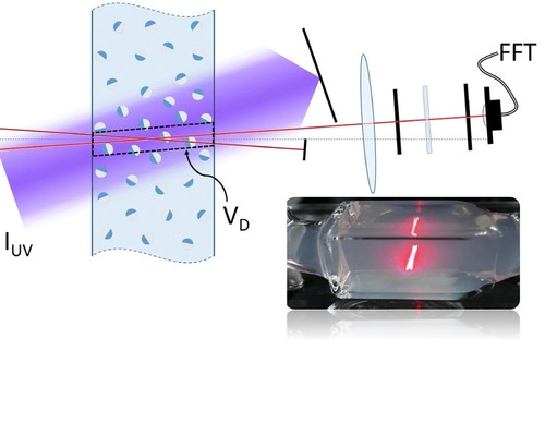 Characterization of active matter in dense suspensions with heterodyne laser Doppler velocimetry